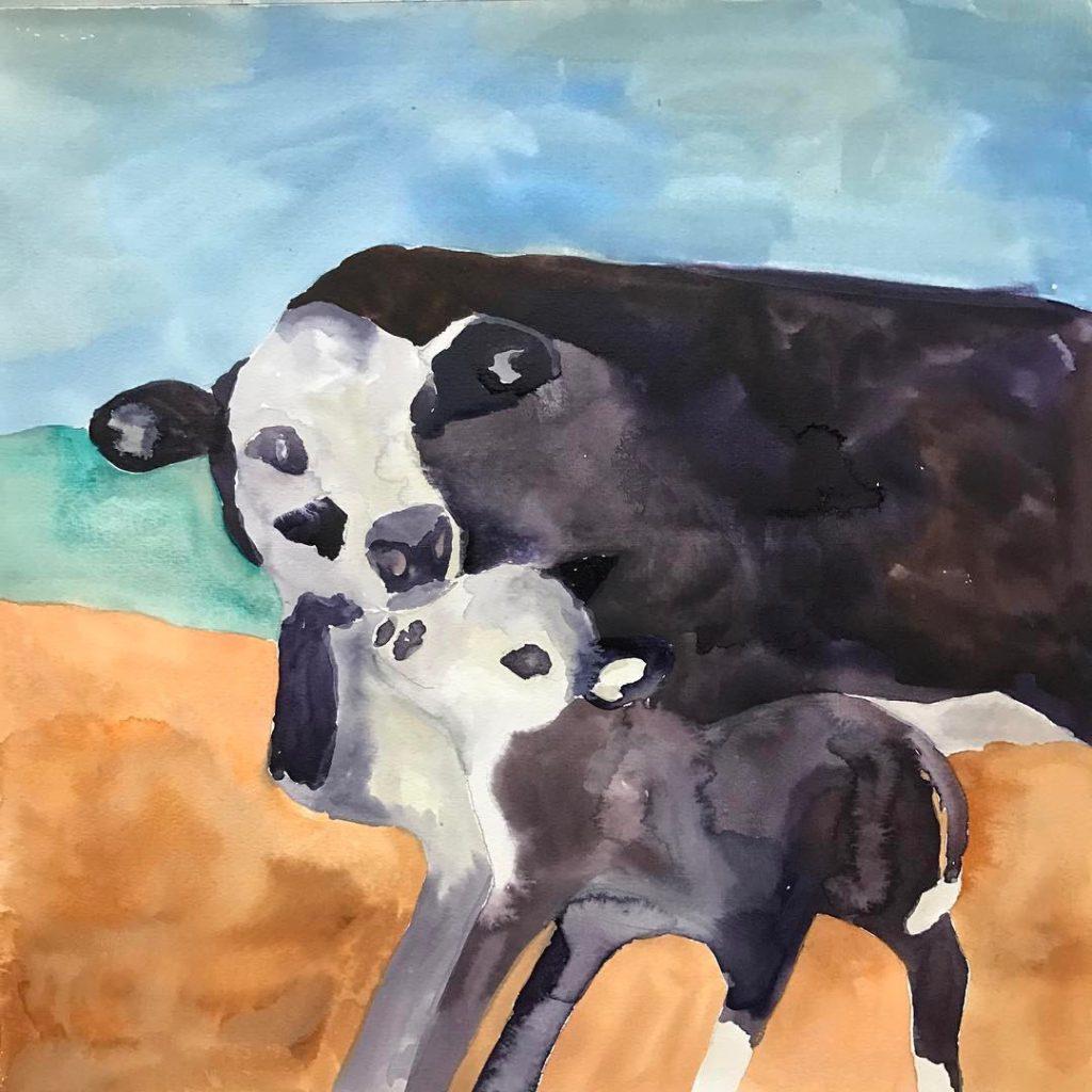 Danas Cows