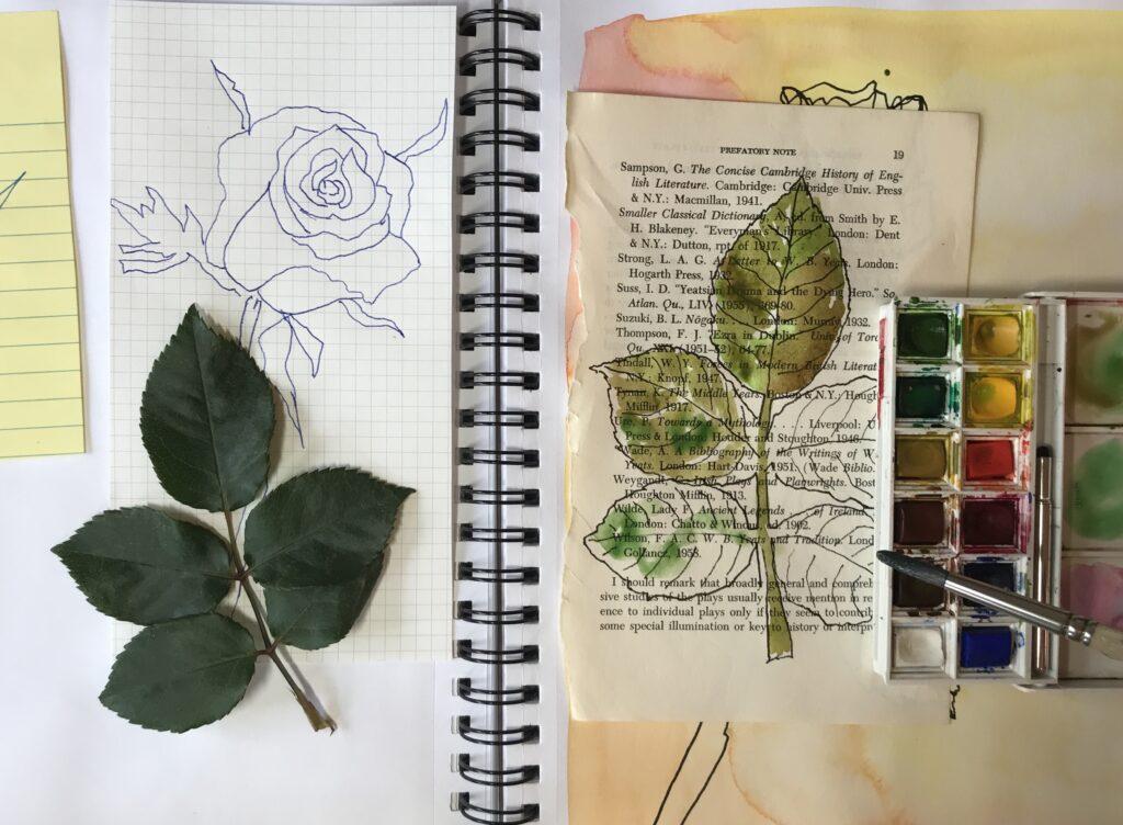 WatercolorNatureJournaling